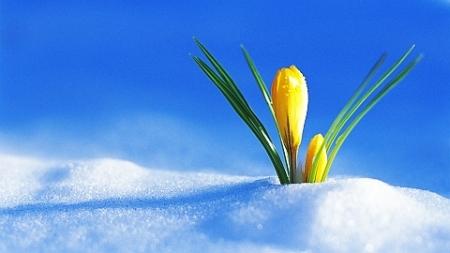 Kältester März seit mindestens 130 Jahren