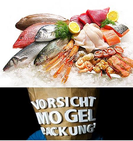 Betrug im Supermarkt Fisch oft gepanscht