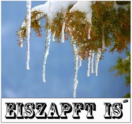 Winter - Eis - Schnee - Kälte - Wintereinbruch