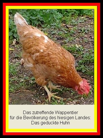 Das zutreffende Wappentier für Deutschland - Ein geducktes Huhn
