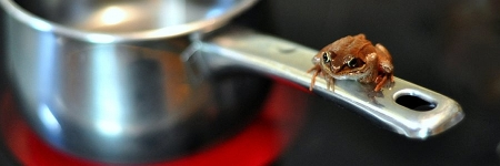 97 Prozent der Bürger wie ein kochender Frosch