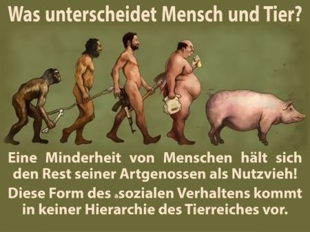 Der Unterschied zwischen Mensch und Tier