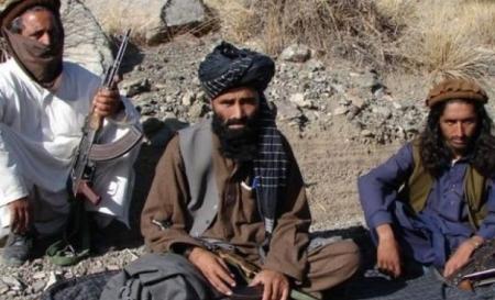 Wer sind die Terroristen...
