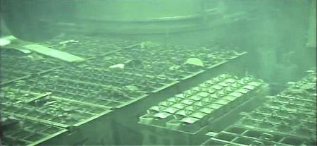 Mehr als 30 Belege für die radioaktive Belastung aus Fukushima..