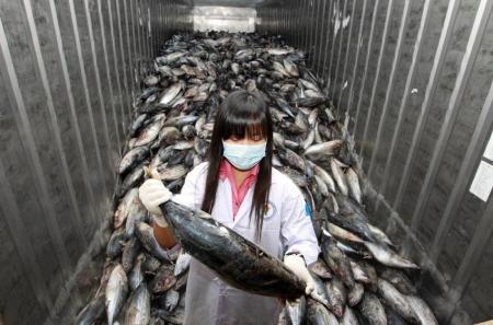 Fukushima und die Folgen....